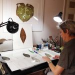 CBCA artist Heather Sandifer in her studio creati[…]